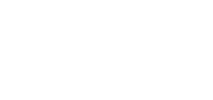pretty noice records wLogo