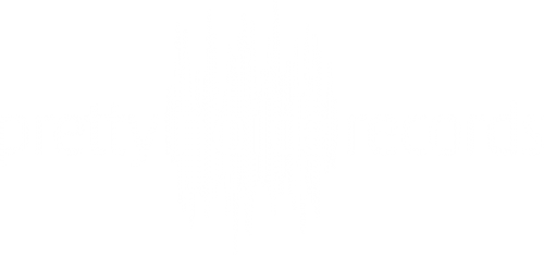 pretty noice records wLogo musiklabel